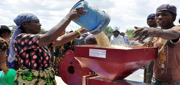 Agriculture Value Chain Development and Enhancement